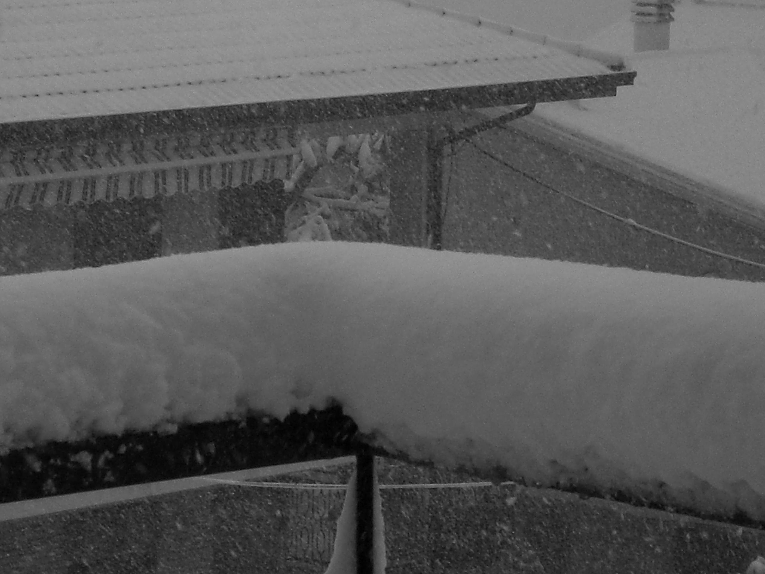 Nevicata del 4 febbraio 2012. Foto di Vittorio Trontini