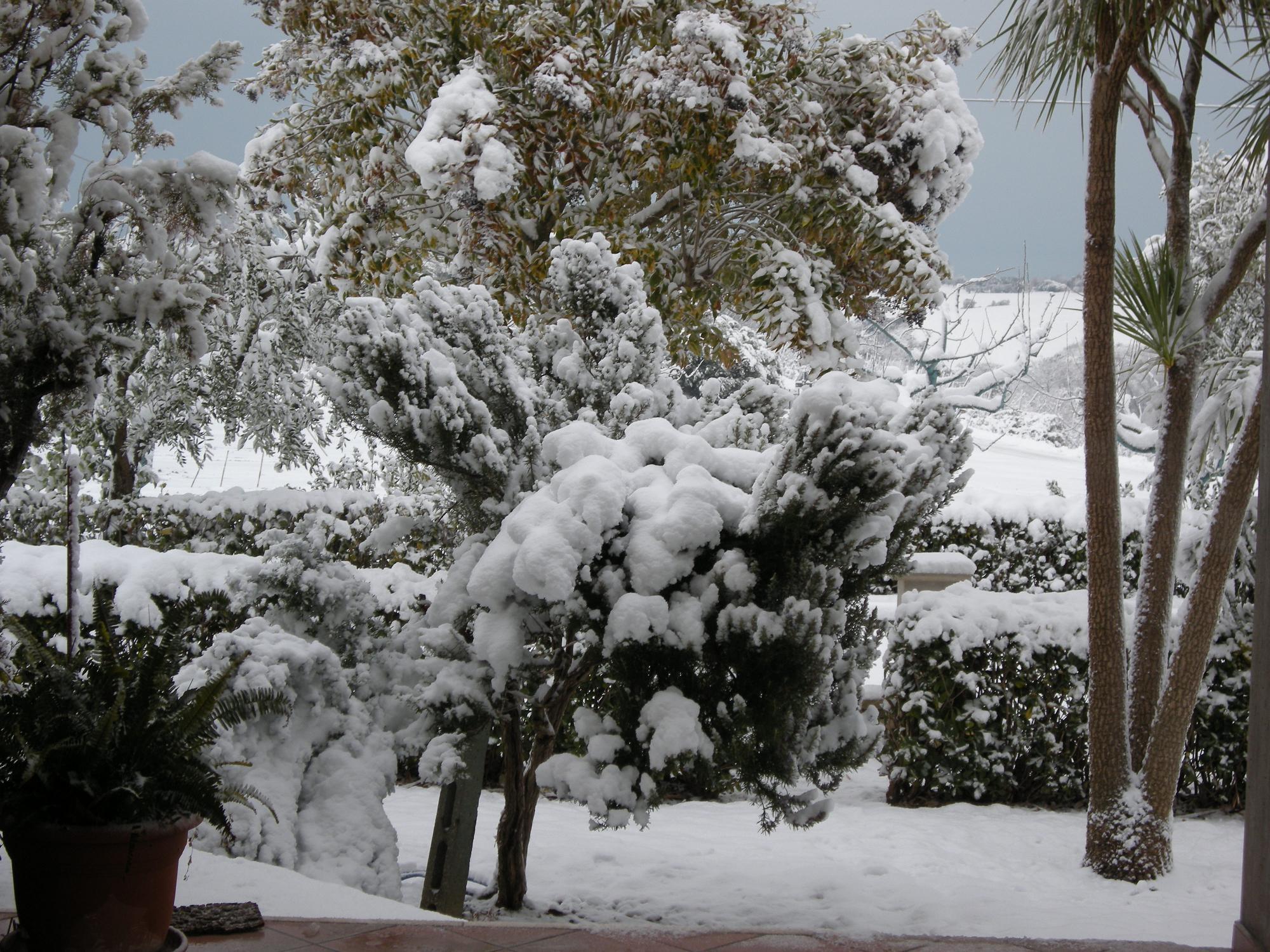 Cupra Marittima 3 febbraio 2012 (foto di Valeria)