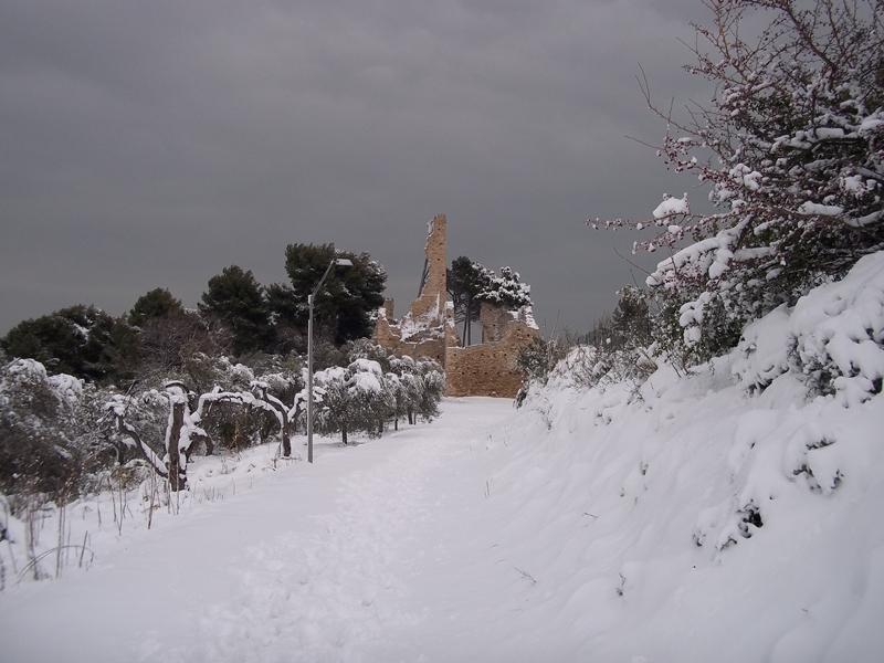 Cupra Marittima-4 febbraio-castello di Sant'Andrea 1(Nicola)