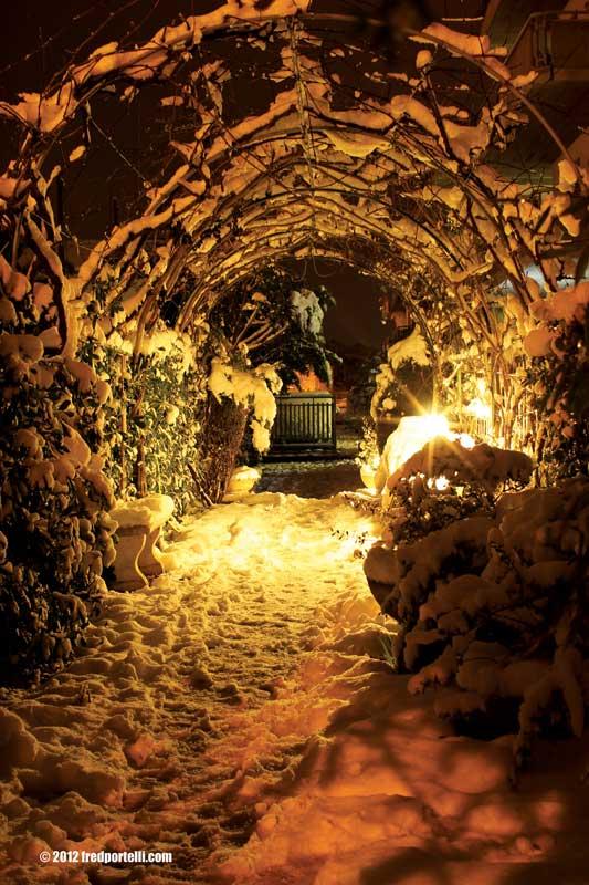 Neve a Cupra Marittima febbraio 2012, Ingresso di casa (Fred Portelli)