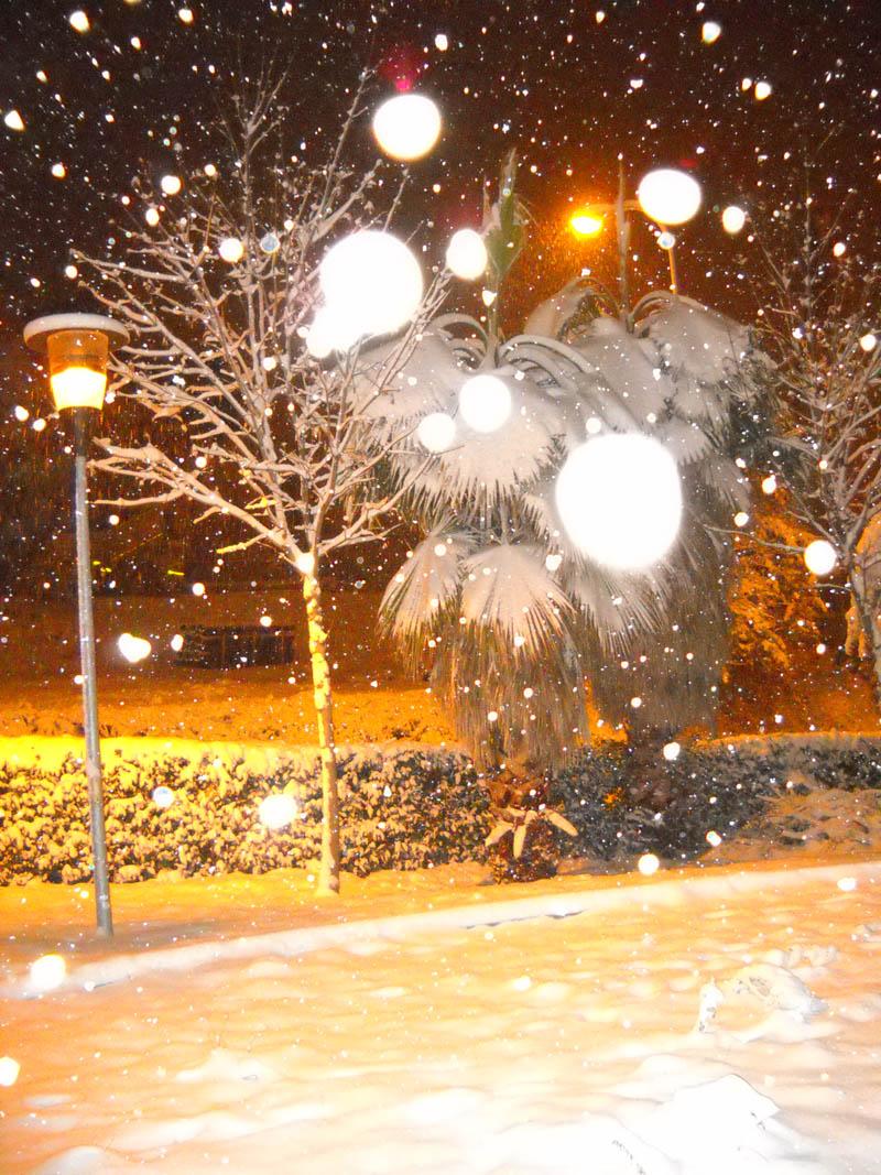 Neve a Centobuchi, 4 febbraio 2012 foto Enrico Narcisi 2