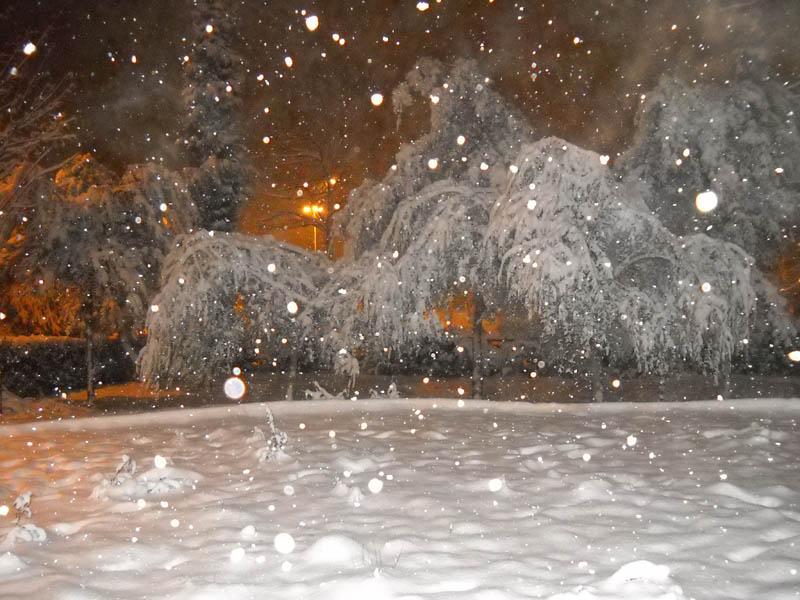 Neve a Centobuchi, 4 febbraio 2012 foto Enrico Narcisi 3