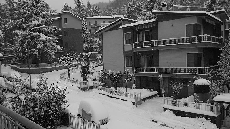 Neve 3 febbraio 2012, foto di Pino Persiani