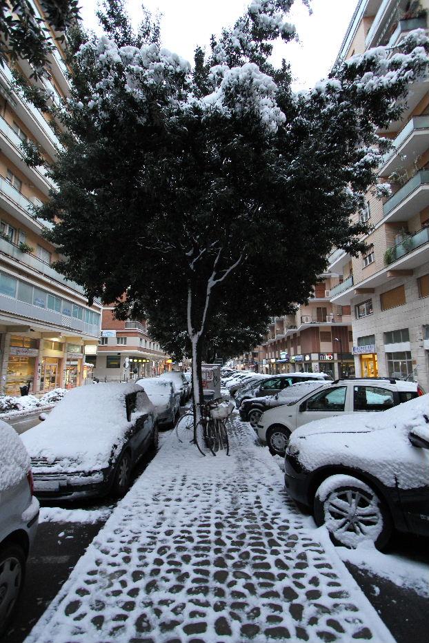 La neve sullo spartitraffico di viale De Gasperi il 4 febbraio 2012, di Antonio L.