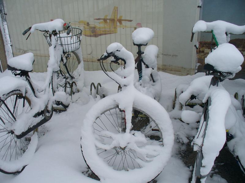 La neve del '12, di Emanuele Bani, 4 febbraio