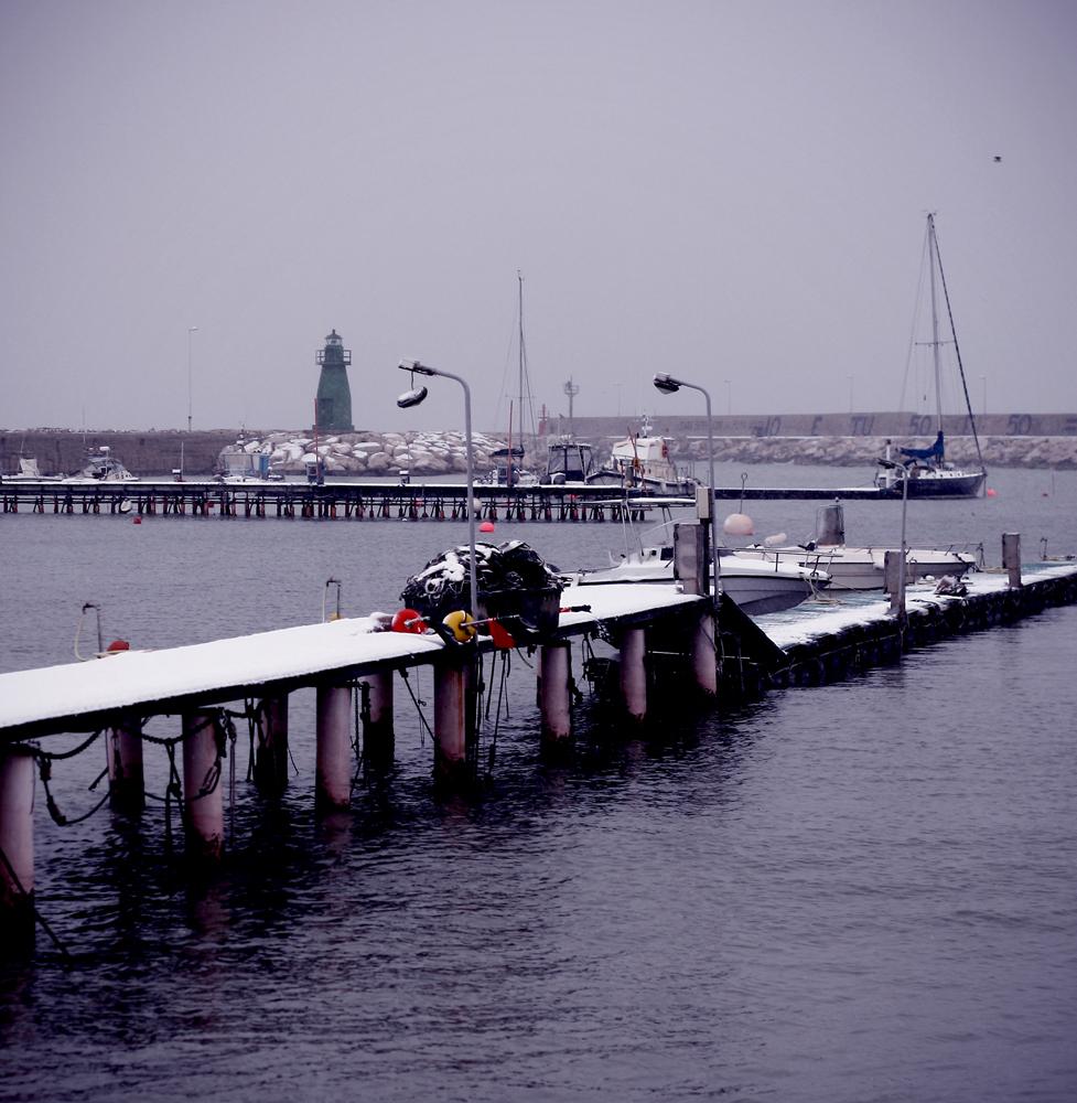 Laura Mecozzi, il porto di San Benedetto con la neve, 5 febbraio 2