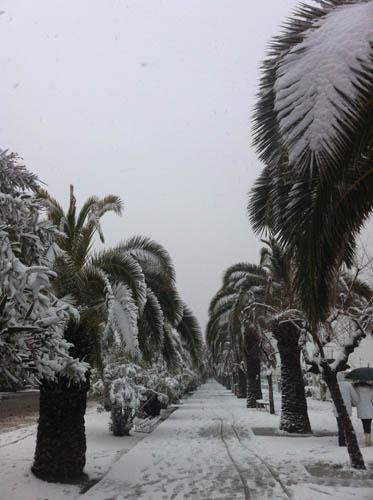Neve sul lungomare di San Benedetto, 7 febbraio 2012 foto Silvia Basili 2