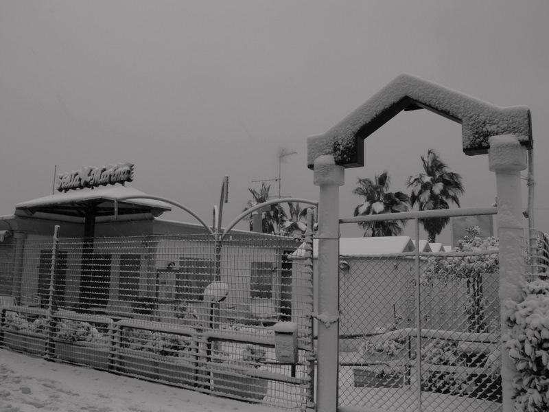 Lungomare di San Benedetto, 3 febbraio 2012 (foto di Elvia Ricci)