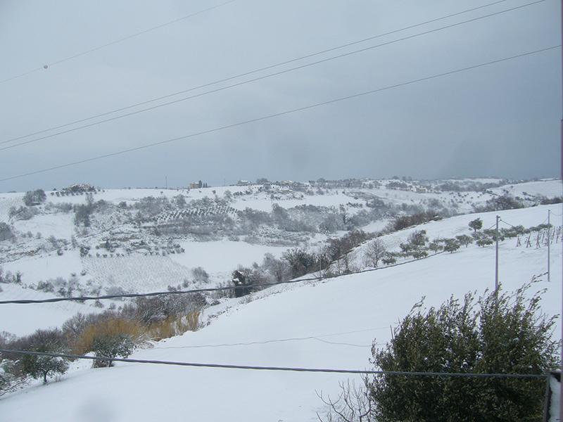Massignano neve 3 febbraio (Giuseppe De Angelis) 5