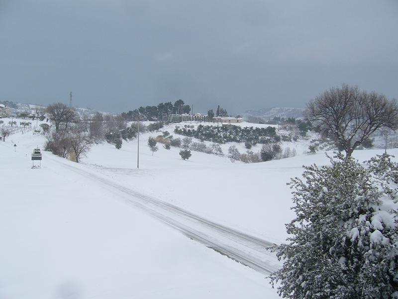 Massignano neve 3 febbraio (Giuseppe De Angelis) 6
