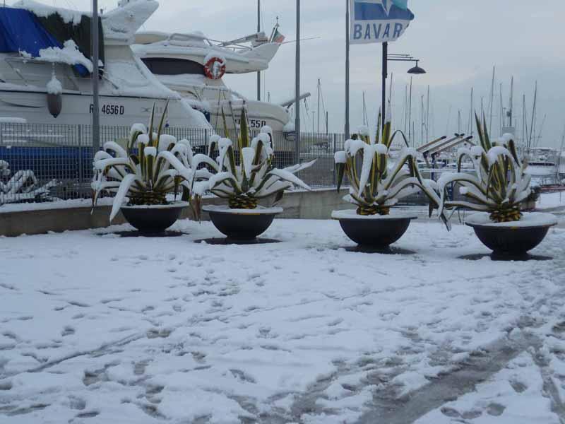 Foto della neve di Francesco Di Biagio, il molo sud