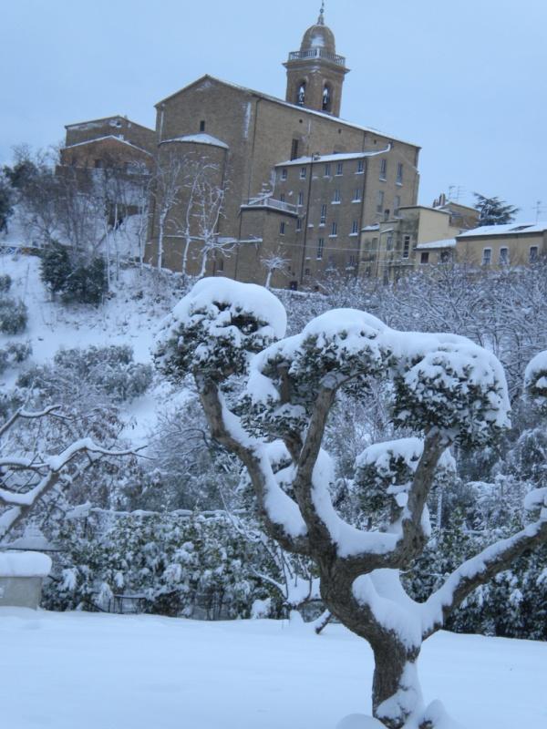 Neve a Monsampolo del Tronto, 5 febbraio 2012