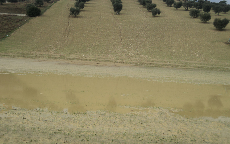 Monte Renzo a Ragnola, da campo da sci a lago, a stagno