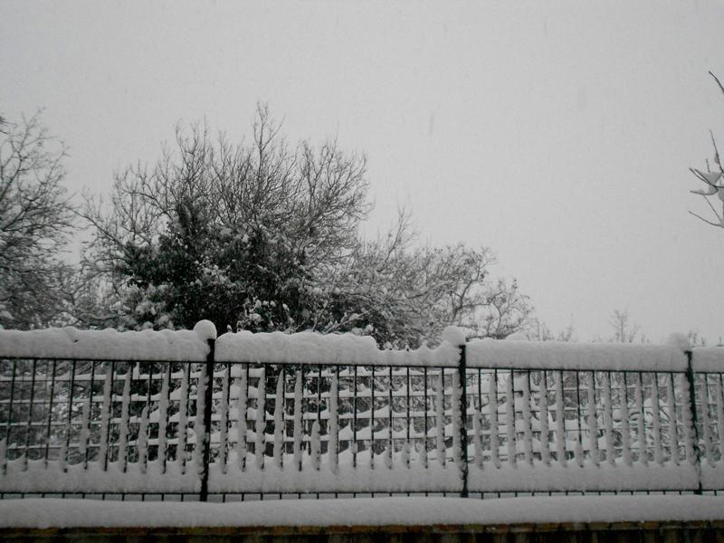 Monteprandone 4 febbraio, neve, Raissa Baroni 4