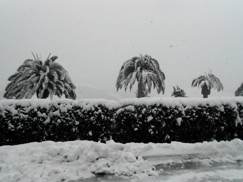 Monteprandone 4 febbraio, neve, Raissa Baroni