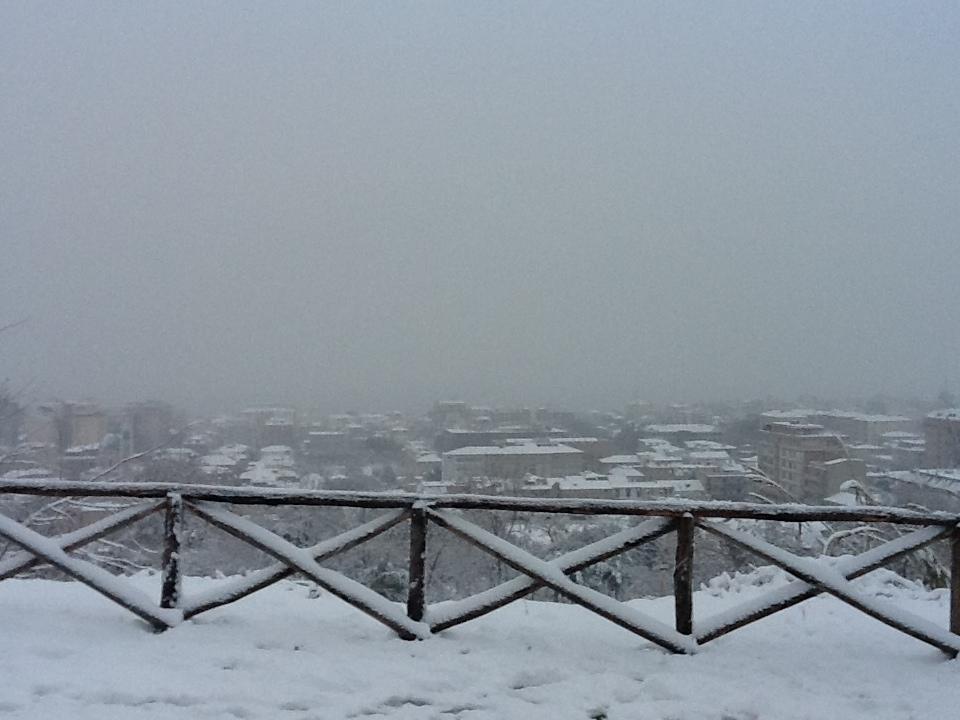 Neve, 3 febbraio 2012 (foto di Gabriele)
