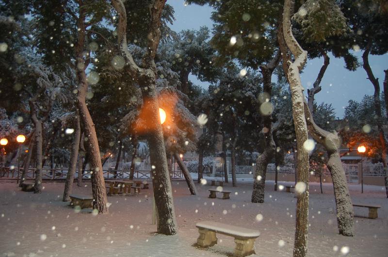 Neve 4 febbraio San Benedetto, di Gino Arzani 1