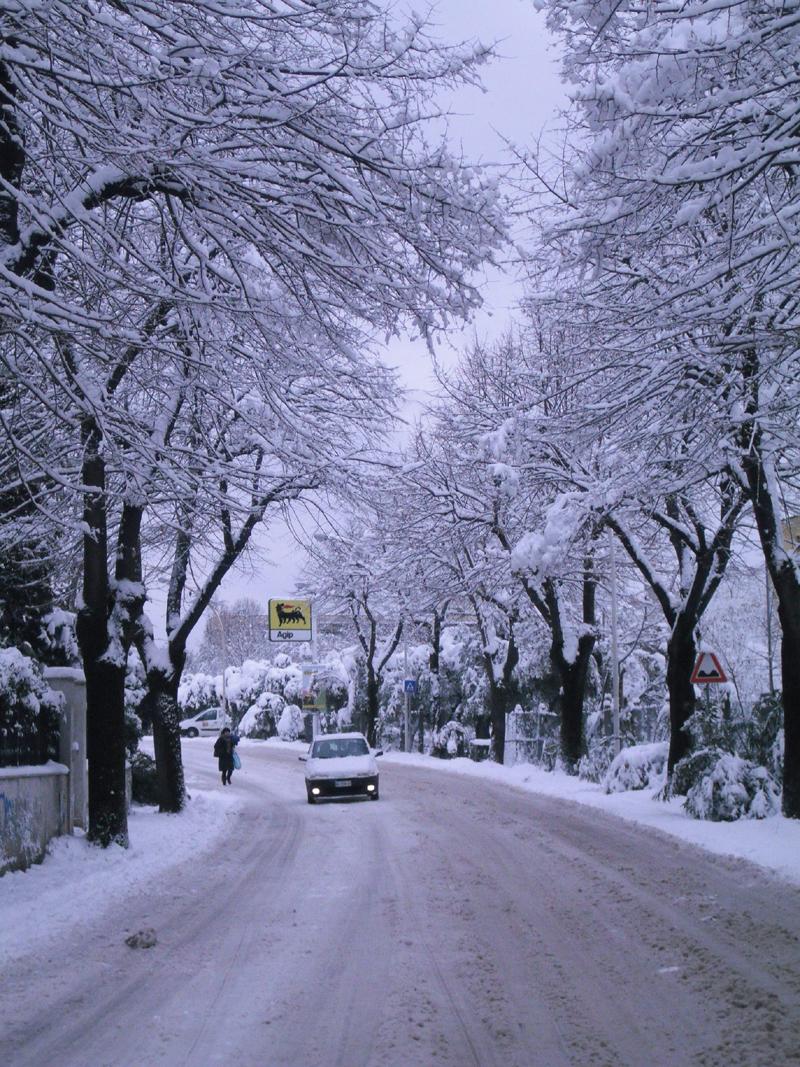 Neve 5 febbraio, Serena Bianchini, passeggiando verso Ascoli 4