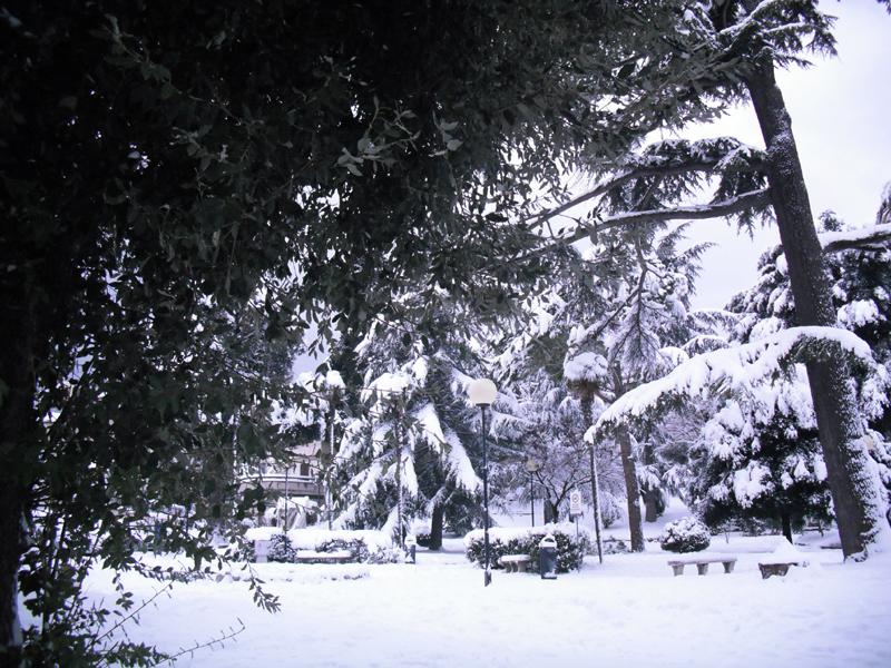Neve 5 febbraio, Serena Bianchini, passeggiando verso Ascoli 9