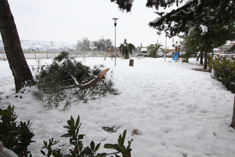 Neve a Centobuchi, 6 febbraio 2012 foto di Antonio I.