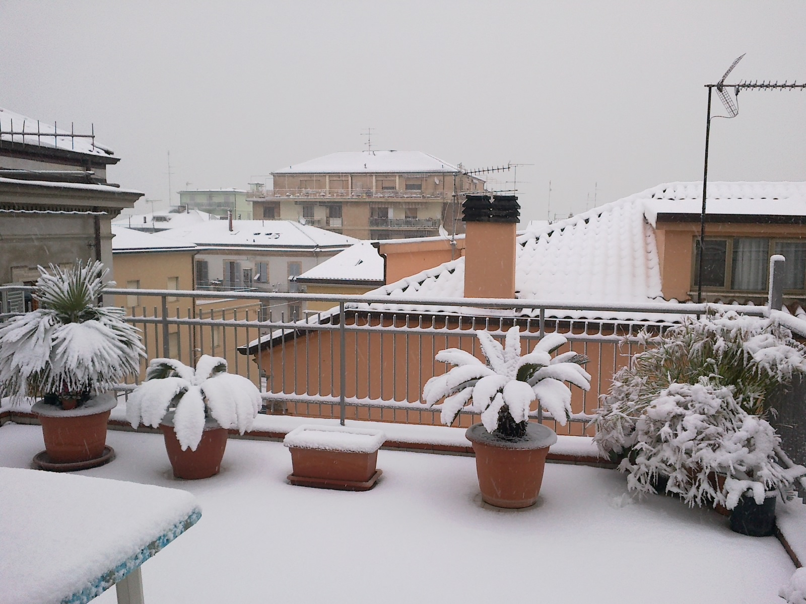 Neve a Cupra Marittima 3 febbraio 2012 (foto di Stefania Reginella)