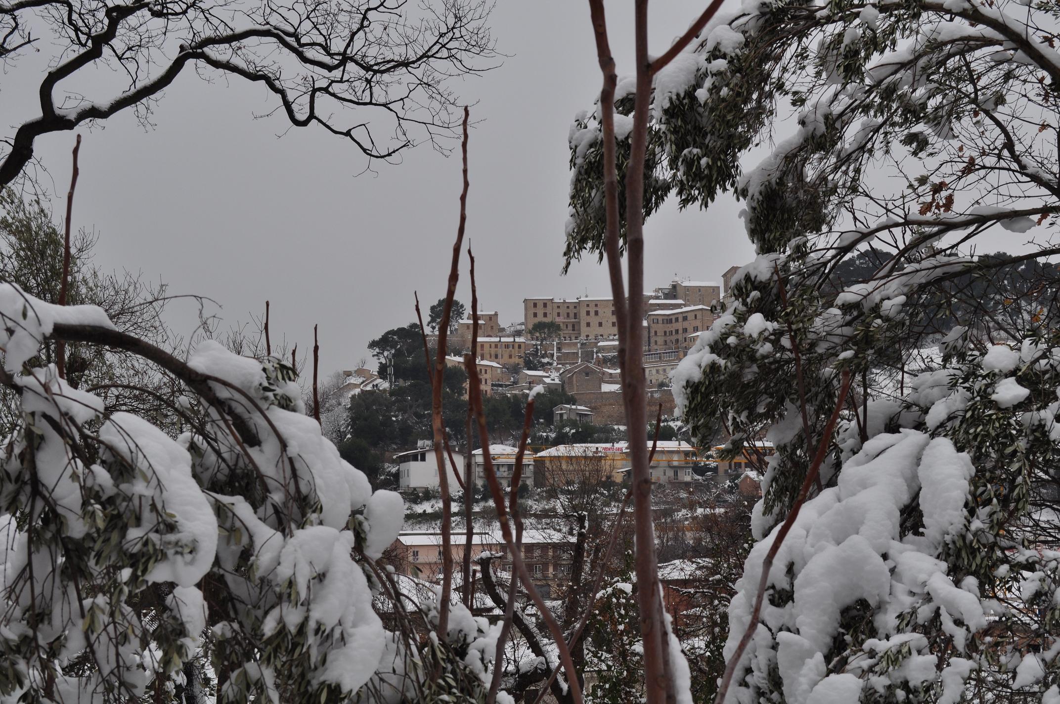 Neve a Cupra Marittima, 6 febbraio 2012 foto di Valeria Tommolini 1