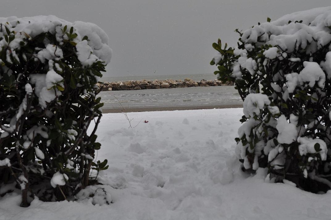 Neve a Cupra Marittima, 6 febbraio 2012 foto di Valeria Tommolini 2