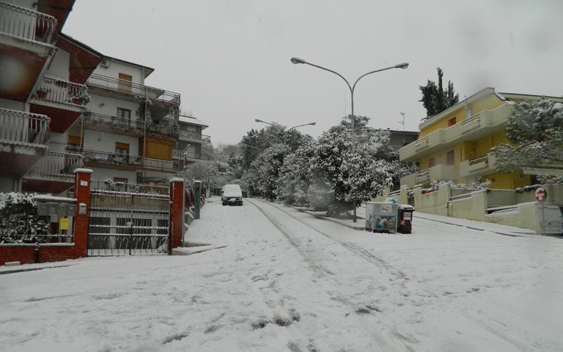 Neve a Grottammare 3 febbraio 2012, Massimo Scarpetta 3