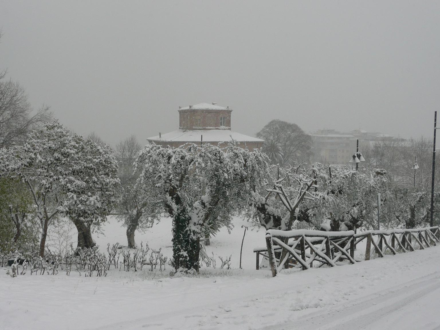 Neve a Grottammare, 4 febbraio 2012 foto di Alessandra Sanguigni