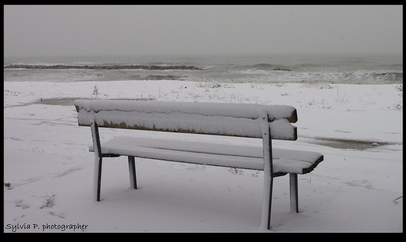Neve a Grottammare, 6 febbraio 2012, foto di Sylvia Perozzi 2