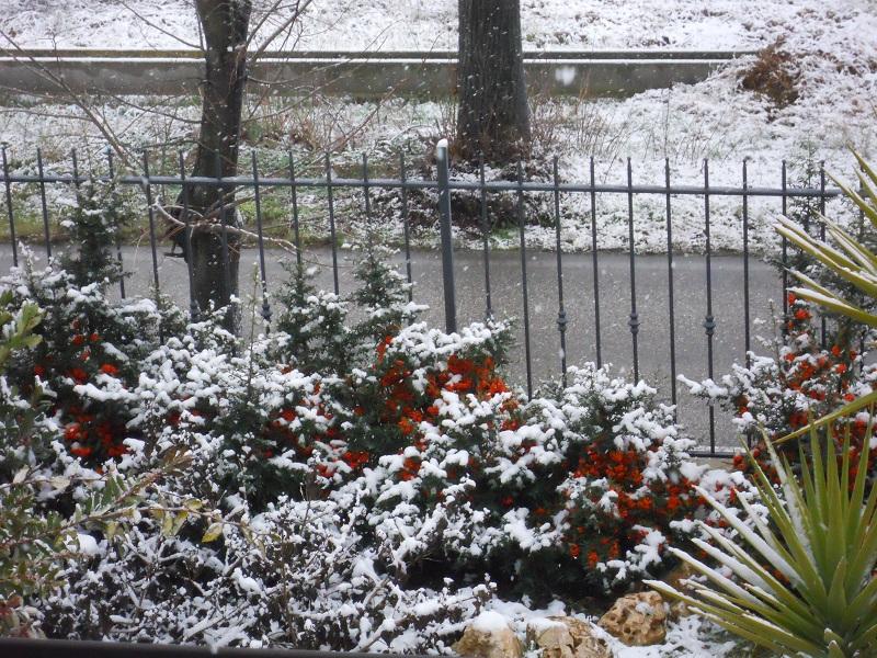 Neve a Monsampolo del Tronto (strada salaria) 3 febbraio 2012
