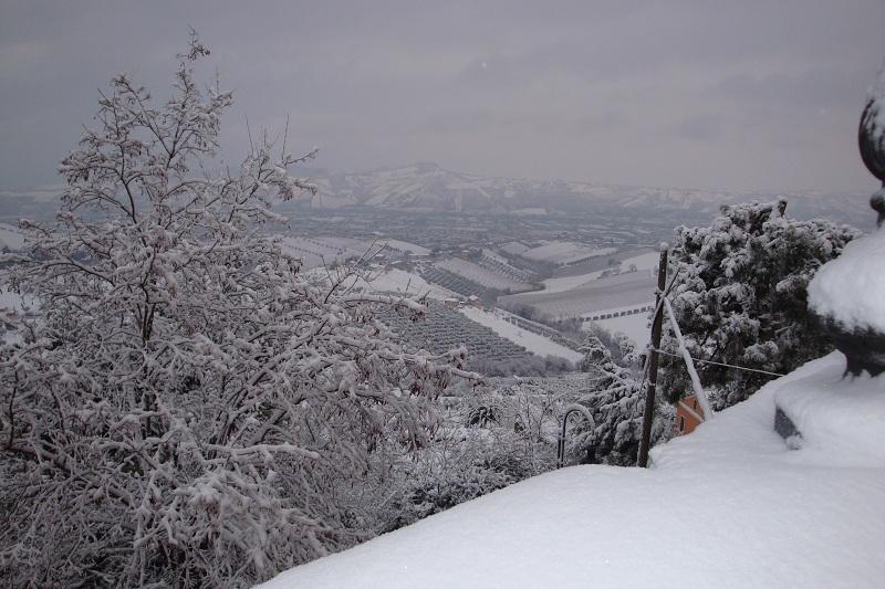 Neve a Monteprandone 3 febbraio 2012 (foto di Luca)