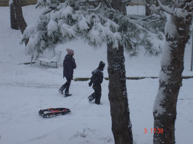 Neve a Monteprandone, 3 febbraio, foto tiniciardi 3