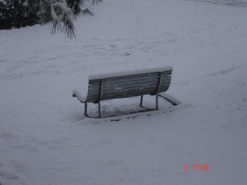 Neve a Monteprandone, 3 febbraio, foto tiniciardi