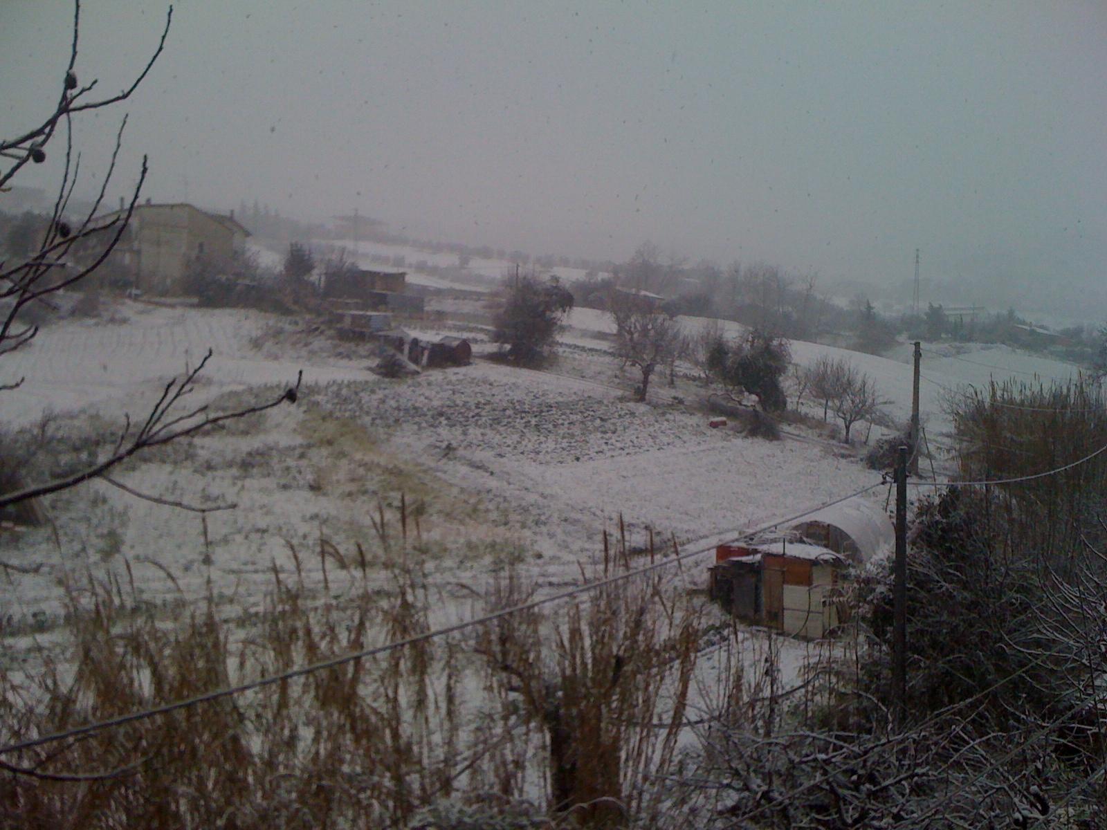 Neve a Ponterotto 3 febbraio 2012 (foto Lorenzo De Angelis)