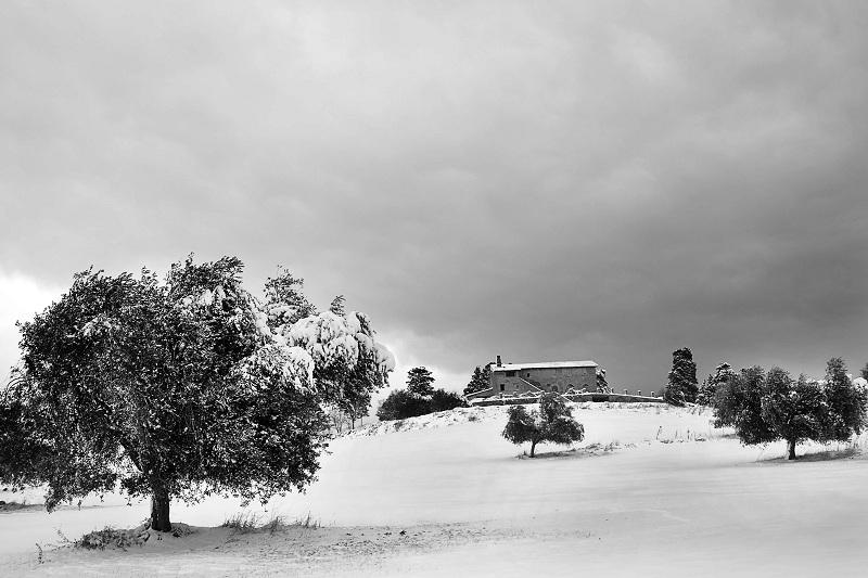 Neve a Porto D'Ascoli, via Montecretaccio, 7 febbraio 2012, foto di Riccardo Leli