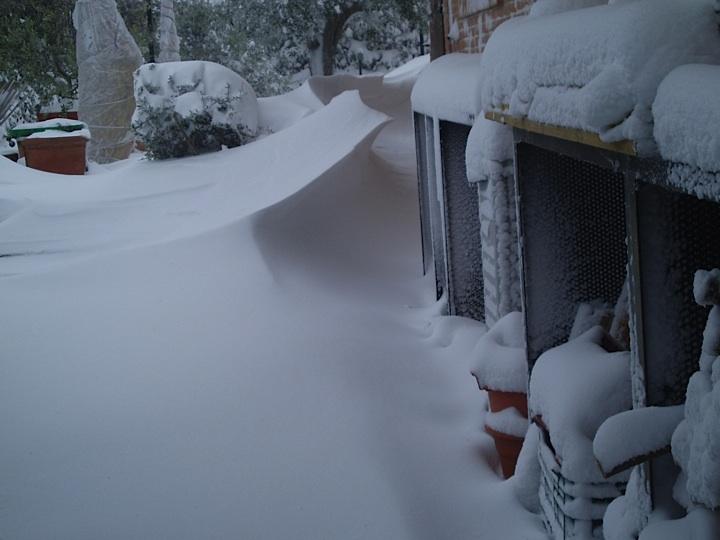 Nevicata Febbraio 2012a C.da Petrella di Ripatransone, foto di Elena Lattanzi