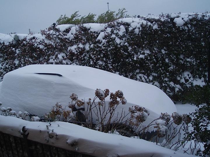 Neve a Ripatransone (Petrella) 4 febbraio (elena lattanzi) 1