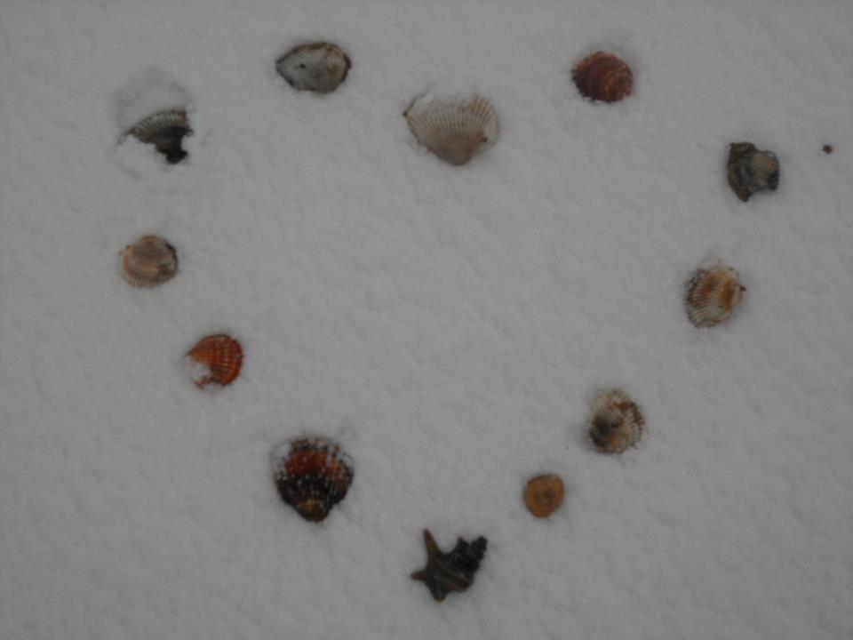 Neve a San Benedetto, 3 febbraio 2012 foto di Elisa e Ilaria