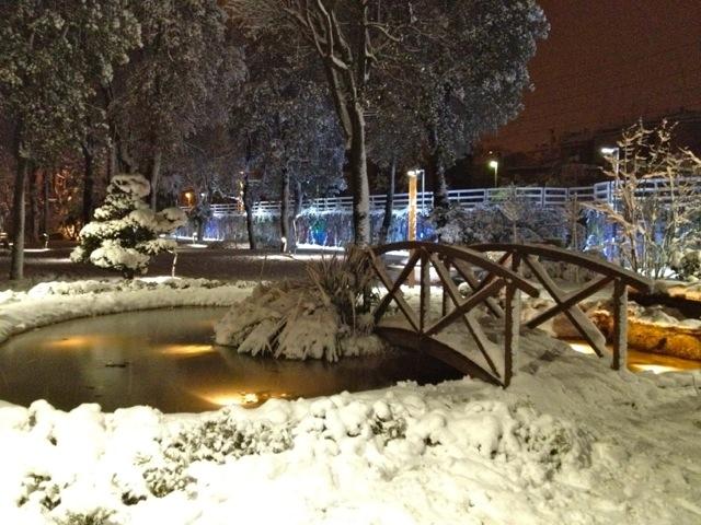 Neve a San Benedetto, 3 febbraio 2012 foto di Sabrina Cava 1