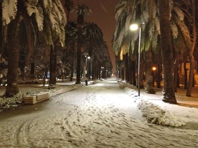 Neve a San Benedetto, 3 febbraio 2012 foto di Sabrina Cava 3
