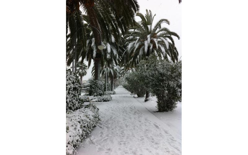 Neve a San Benedetto, 3 febbraio, foto Roberta Mascaretti