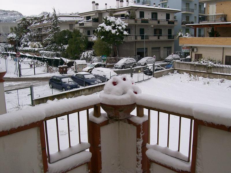 Neve a San Benedetto, 4 febbraio 2012 foto Achille 2