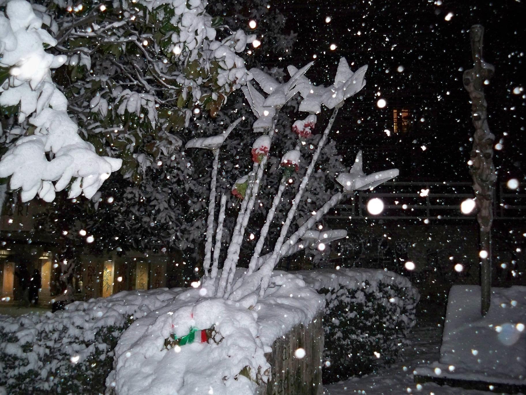 Neve a San Benedetto, 4 febbraio 2012 foto di Carlos 4