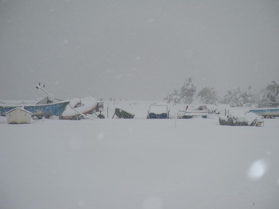 Neve a San Benedetto, 4 febbraio 2012 foto di Stefano Cocci 2