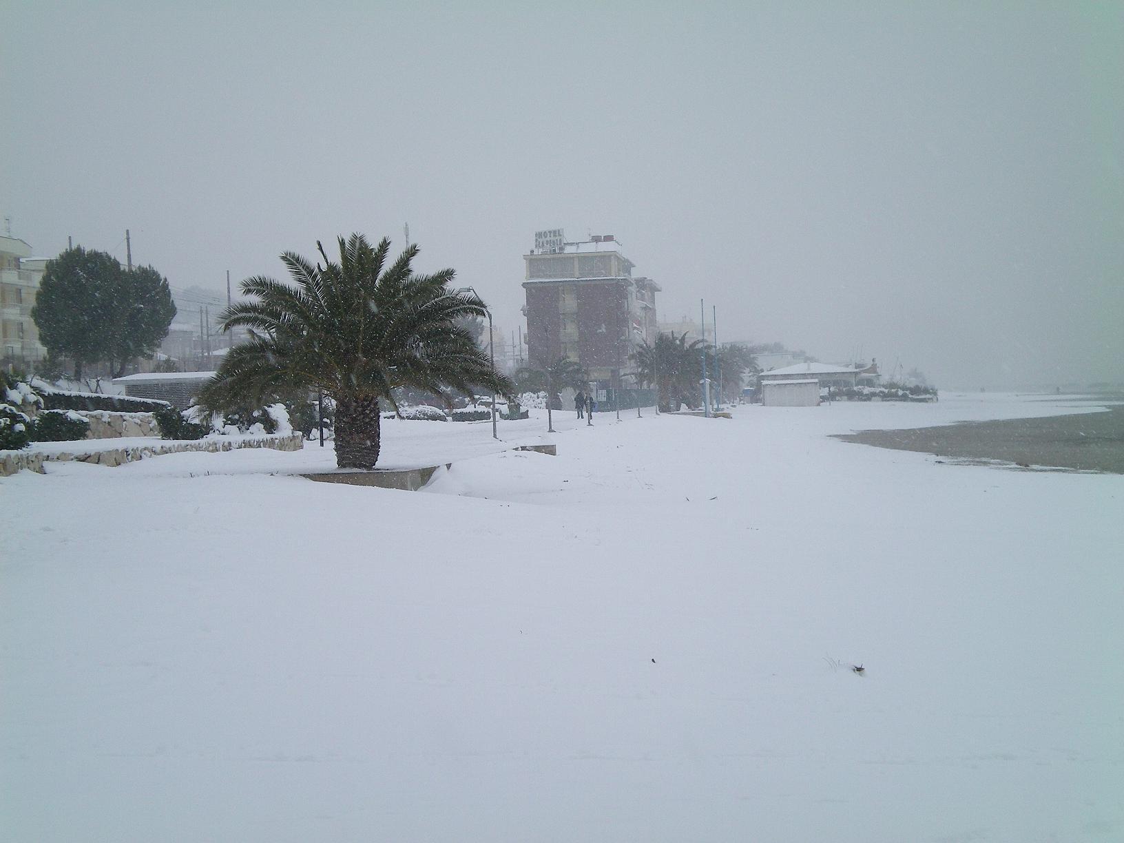 Neve a San Benedetto, 6 febbraio 2012 foto di Alfredina Rossi 2