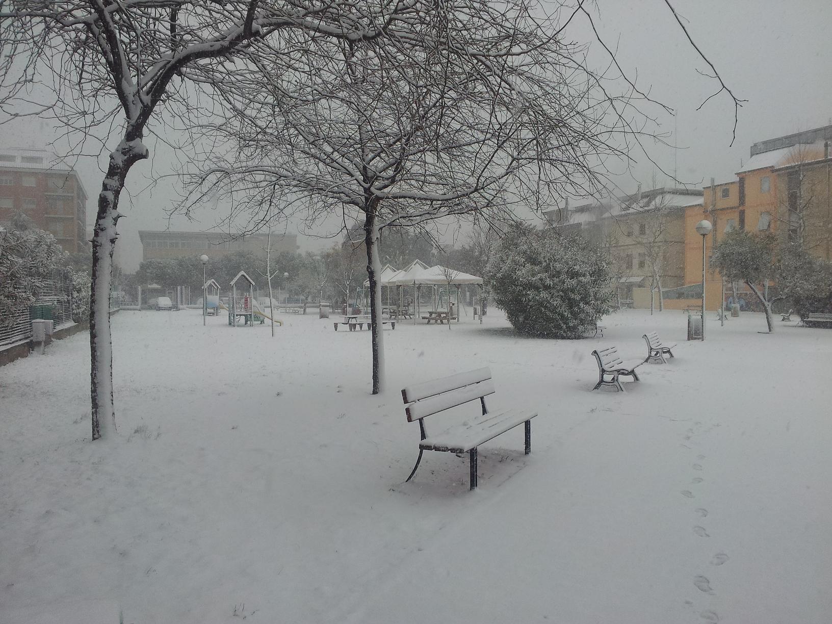 Neve a San Benedetto, 6 febbraio 2012 foto di Alfredina Rossi 3