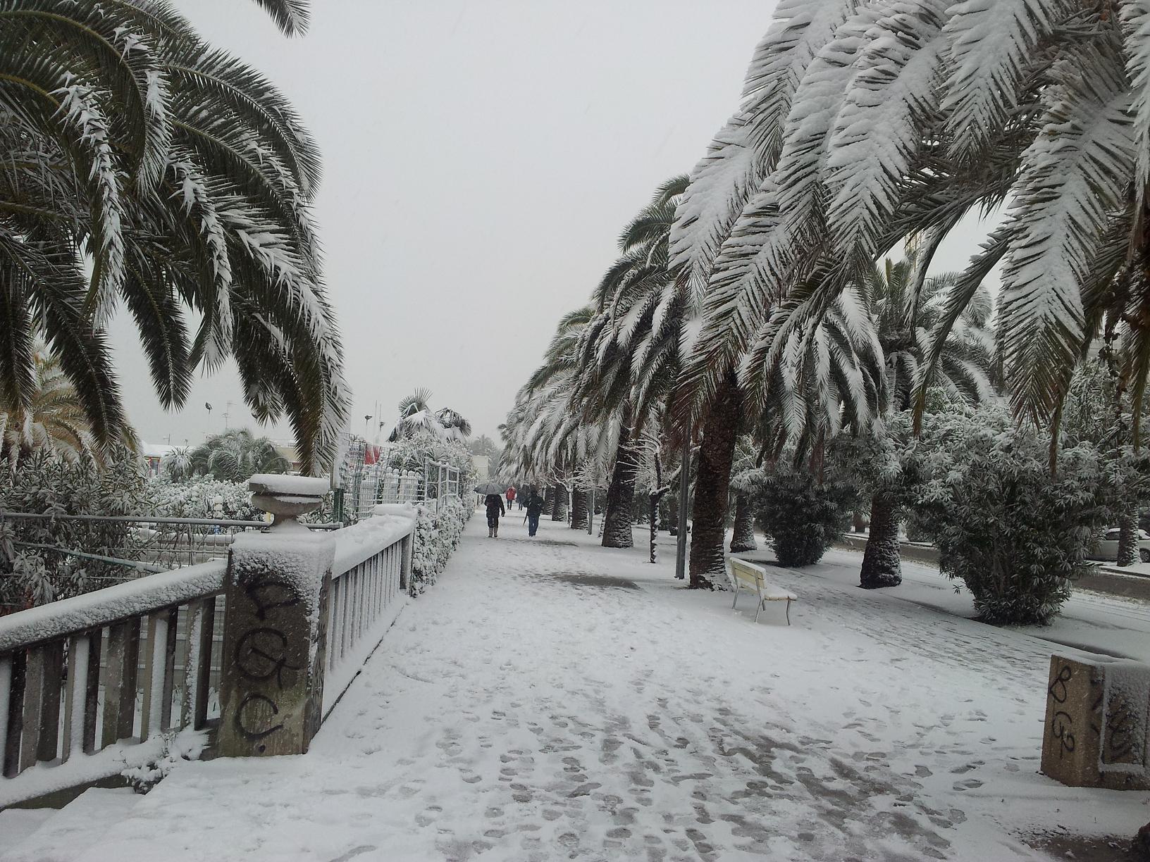 Neve a San Benedetto, 6 febbraio 2012 foto di Alfredina Rossi 4