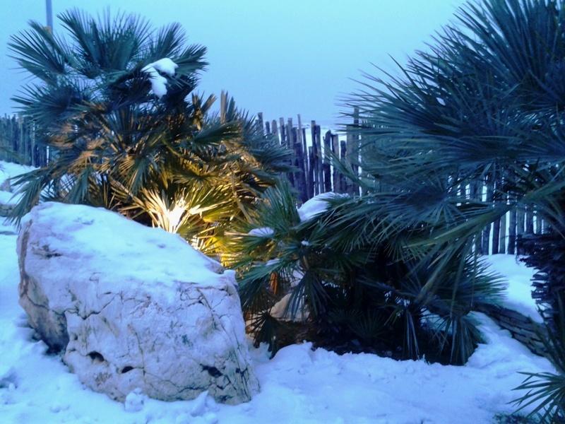 Neve a San Benedetto, 7 febbraio 2012 foto Roberta Corimbi 1