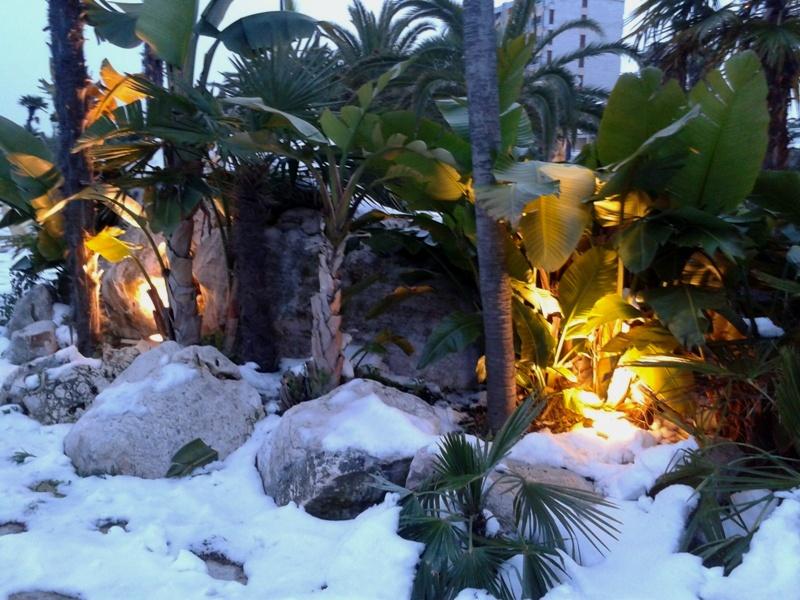 Neve a San Benedetto, 7 febbraio 2012 foto Roberta Corimbi 3